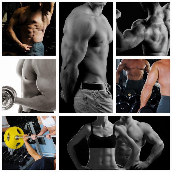 men and women fitness bodybuilders exercising