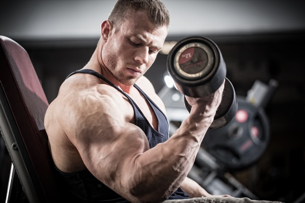 how to get muscles