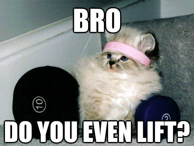 Funny Motivation Workout Meme : Do you even lift funny memes muscle building pre workout